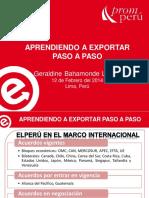 1Aprendiendo a Exportar Paso a Paso.pdf