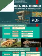 MICOLOGIA NUTRICION, CRECIMIENTO Y METABOLISMO.pdf