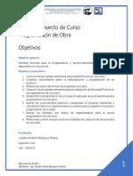 Guía Proyecto Curso PROGO