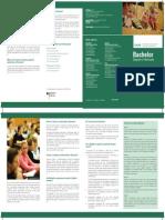 Bachelor-Studies-in-Germany-2020.pdf