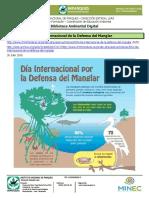 Día Internacional de la Defensa del Manglar
