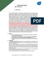 PLAN DE TRABAJO CURPISCO.pdf
