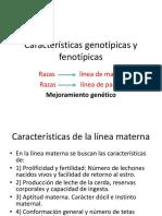 caractersticasgenotpicasyfenotpicas-140703201851-phpapp01