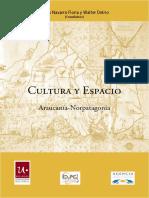 libro araucania y argentina siglo xix y xx.4.pdf