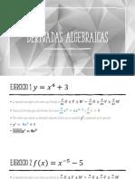 Derivadas algebraicas.pdf