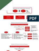 213 Sistemas de Protección de DDHH pdf