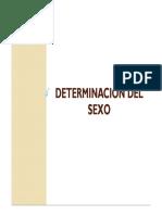 2. Determinación del sexo.pdf