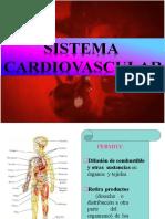 Aparato Cardiovascular (Grupo1).pptx