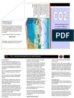 CO2 flyer1