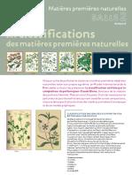 fs_mip_french(1)