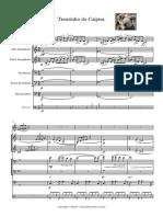 Trenzinho do Caipira - score and parts.pdf