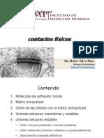 Comunicación por contactos físicos - Ciclo II
