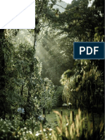 The youth guide forests traducidopdf