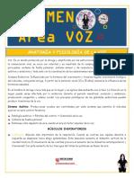 VOZ RESUMEN (1).pdf