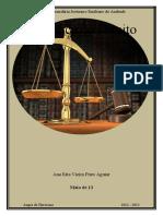 A Prática do Direito - Profissões Jurídicas e Parajurídicas - Ana Rita Aguiar.docx