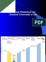 Metabolism part 1