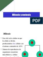 7° MITOSIS Y MEIOSIS