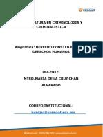DZUL_RODRIGUEZ_DERECHO_CONSTITUCIONAL