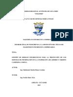 Investigacion_seguridad_informatica