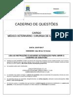 4_medico_veterinario_caes e gatos