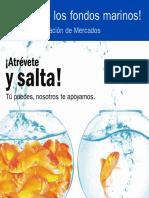 Guía de Investigación de Mercados.pdf