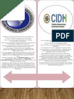 comision y corte interamericana de derechos humanos