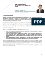 CV DOCUMENTADO ING. CIVIL JOSE PALACIOS HIDALGO 2020.pdf