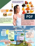 Energía alimentos