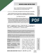 El Proceso Constitucional de Amparo Contra Resolución Judicial -Autor José María Pacori Cari