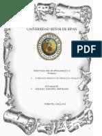 MODELO CONTESTACIÓN DE DEMANDA DE ALIMENTOS