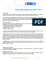 Documento - taller microbiologia