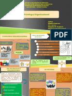 mapa funcion del psicologo.pptx