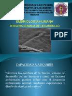 TERCERA SEMANA DESARROLLO EMBRIOLOGICO A