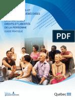 GUI_Pratique_Valeurs_FR.pdf