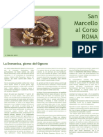 Newsletter san marcello agosto 2019