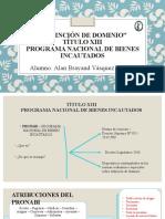 TITULO XIII PROGRAMA NACIONAL DE BIENES INCAUTADOS