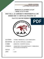 TRABAJO ACADEMICO DERECHO CONSTITUCIONAL PDF