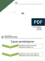 1.Sel-Fd-4