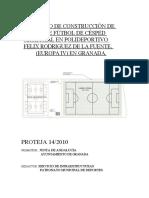 PROYECTO CAMPO FELIX PROTEJA 14-2010.docx