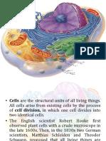 Human cell anatomy
