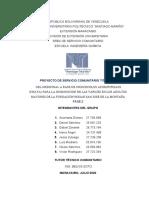 Informe 2da. fase (2)