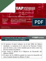 objetivos del desarrollo sostenible.pdf