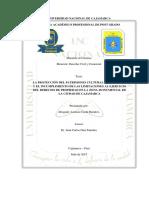 protaccion cajamarca.pdf
