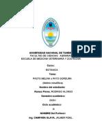 monografia de pasto melina.docx