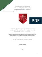Tesis 14 Medicina Veterinaria y Zootecnia -CD 245.pdf