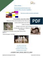 História- O Lobo que estava farto de andar.pdf