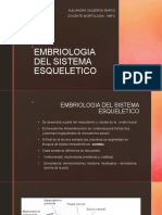 EMBRIOLOGIA DEL SISTEMA ESQUELETICO