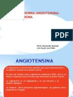 sistemarenina-angiotensina-aldosterona-150319203630-conversion-gate01-convertido