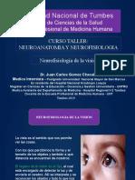 Neurofisiologia de la VISION ok.pptx