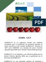 GLOBAL-GAP (1)